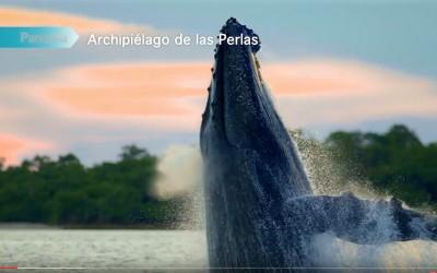 Panama – Ecoturismo