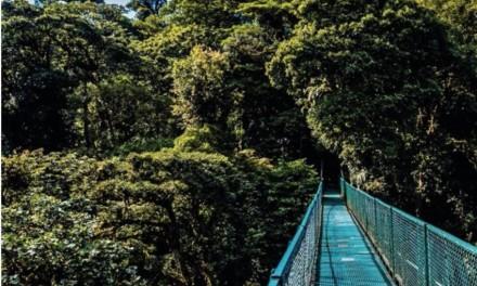 Focus sur Cocle sans oublier les richesses multiples du Panama