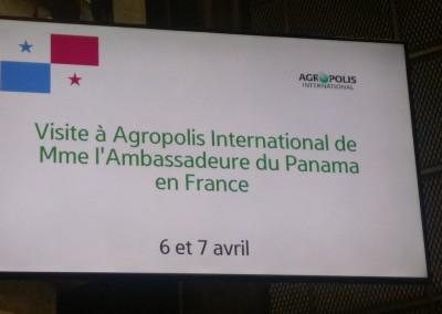 Visita de la Embajadora Pilar de Alemán en Agropolis Internacional, Montpellier, 6 y 7 de abril 2017.