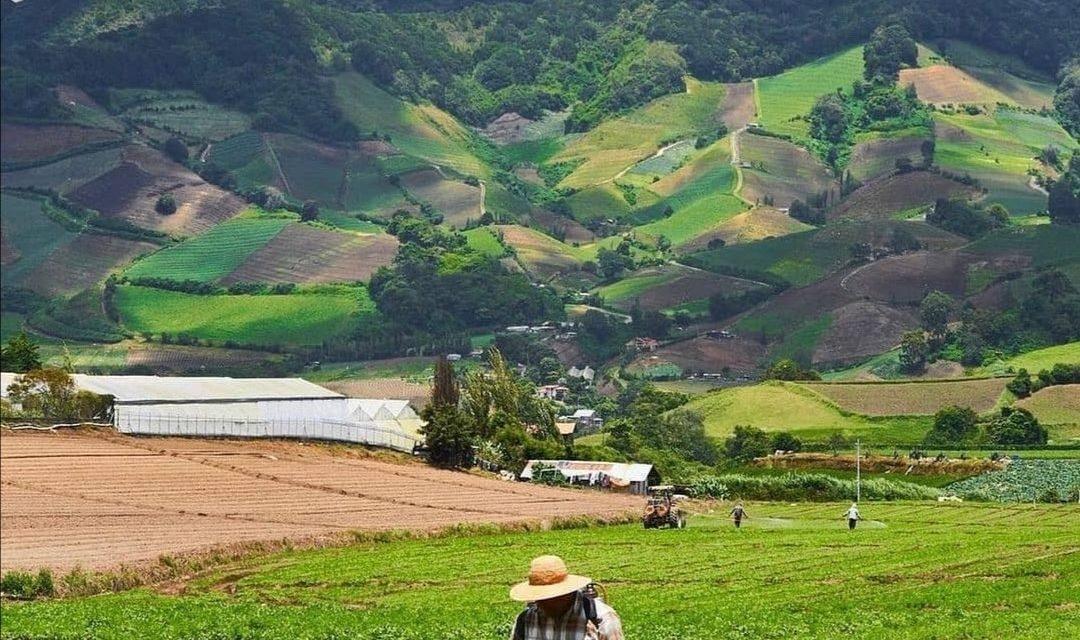 Cerro Punta, Chiriqui! Les hauts terres et l´agriculture au Panama!